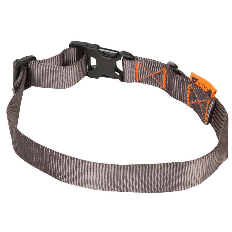 Collier chien gris 100