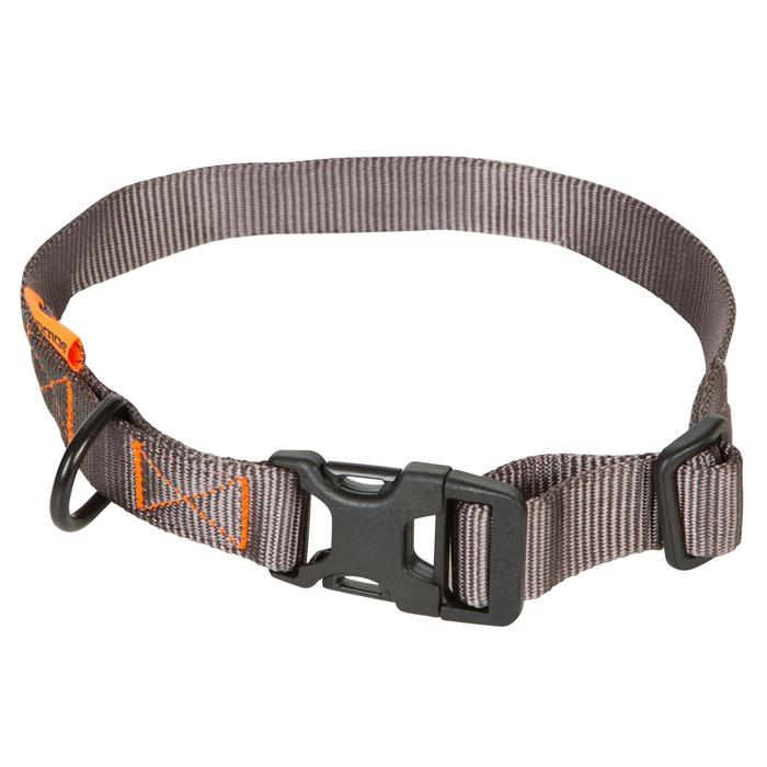 Collier chien 100 - 602361