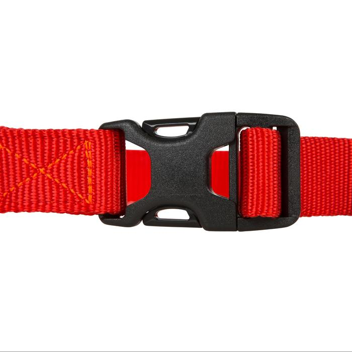 Collier chien 100 - 602362
