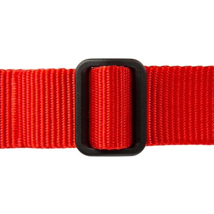 Collier chien 100 - 602364