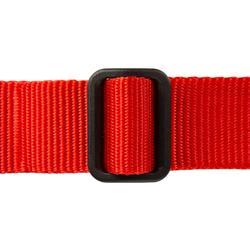 Collier chien 100 rouge