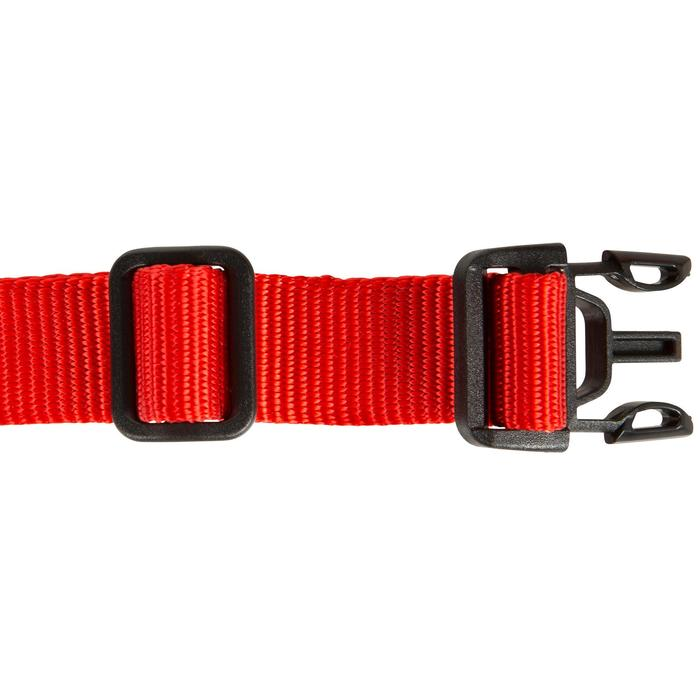 Collier chien 100 rouge