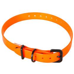 Collier chien 300 orange