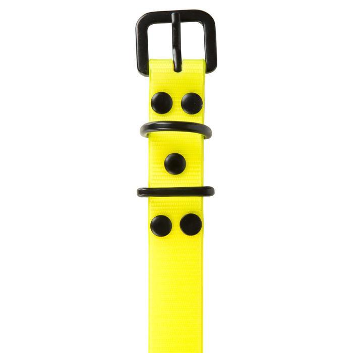 Collier chien 300 jaune