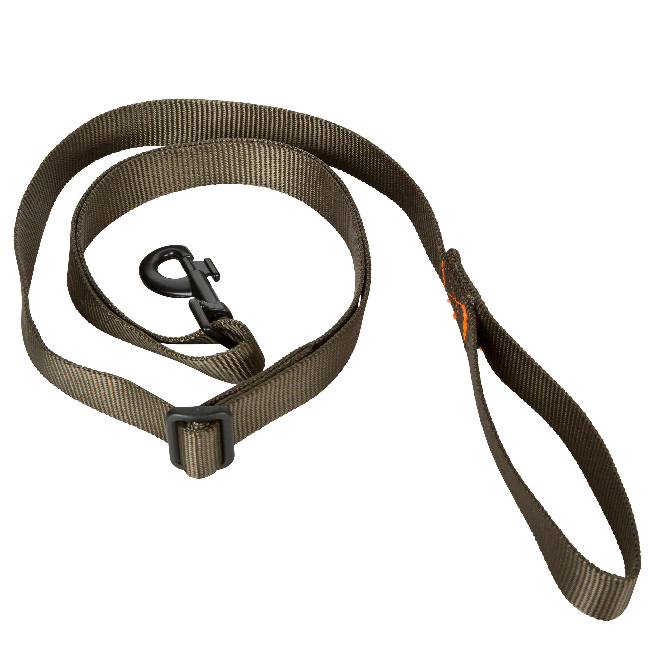 Dog lead 100 Green