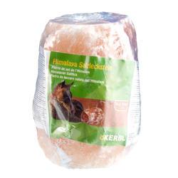 Pierre à sel équitation pour chevaux et poneys HIMALAYA environ 2,5 kg