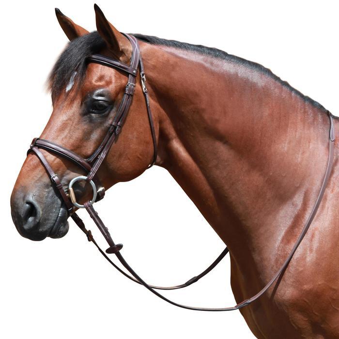 Filet + rênes équitation cheval et poney TINCKLE marron - 646835