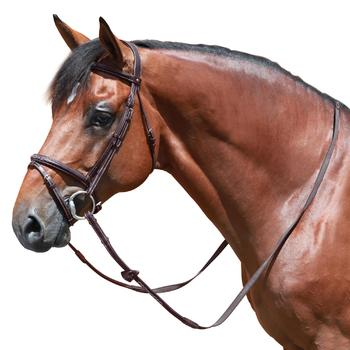 Filet + rênes équitation RECALL - poney et cheval - 648230