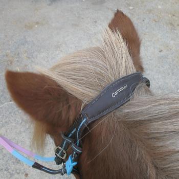 Filet + rênes équitation cheval et poney INITIATION - 648381