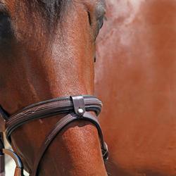 Hoofdstel + teugels Tinckle ruitersport bruin - pony en paard - 648444