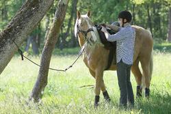 Herenrijbroek met rechte pijpen jeans zwart - 663019