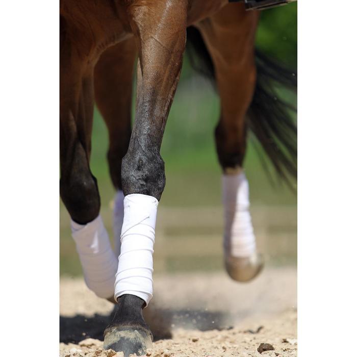 4 vendas de polo equitación caballo y poni blanco - 3 m