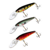 BARN Kit 50 Fishing Floating Plug Bait Kit