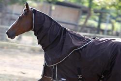 Waterdichte neckcover Allweather Light ruitersport paard bruin - 692899