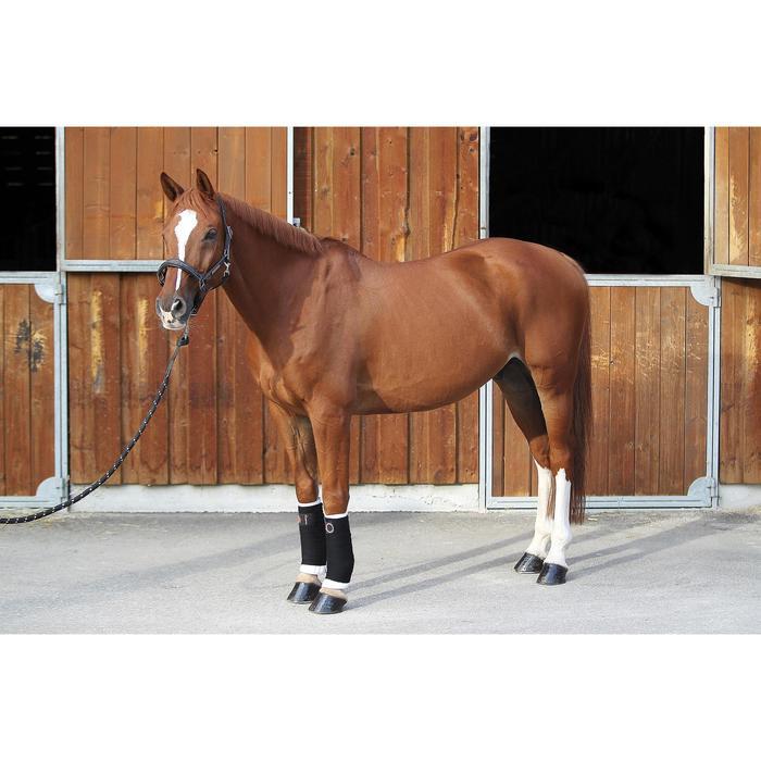 Lot de 2 petites flanelles équitation poney et cheval - 693112
