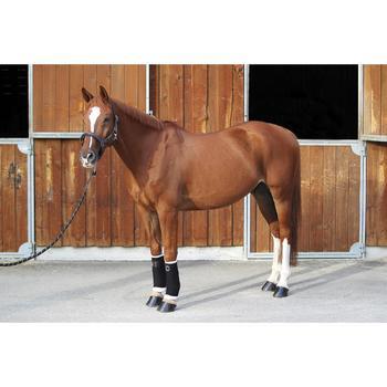 Licol équitation poney et cheval ROMEO cuir - 693118