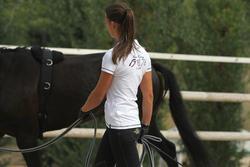 Werksingel ruitersport zwart voor pony's en paarden - 693243