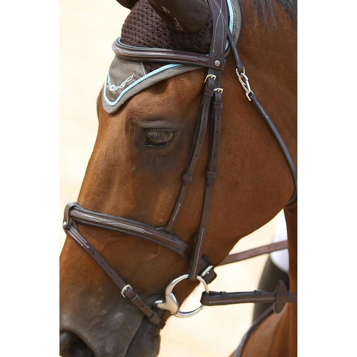 Filet + rênes équitation cheval et poney TINCKLE marron - 693272