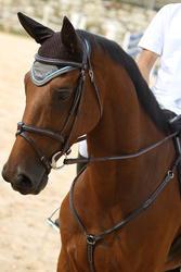Hoofdstel + teugels Tinckle ruitersport bruin - pony en paard - 693274