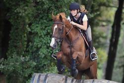 Hoofdstel + teugels Tinckle ruitersport bruin - pony en paard - 693276