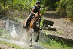 Hoofdstel + teugels Tinckle ruitersport bruin - pony en paard - 693278