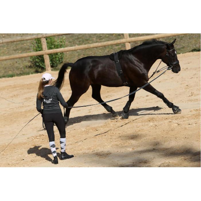 Gogue equitación SCHOOLING marrón - talla caballo