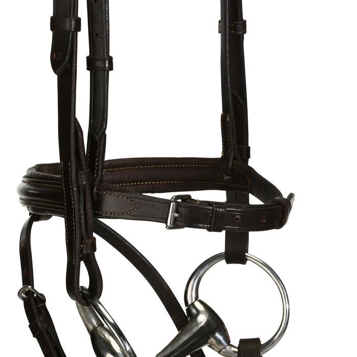 Filet + rênes équitation cheval et poney EDIMBURGH - 694566