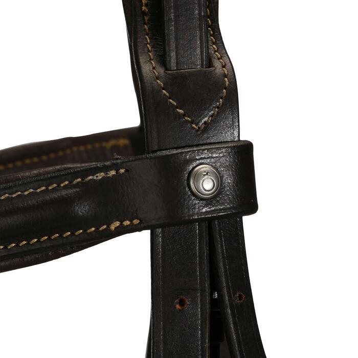 Filet + rênes équitation cheval et poney EDIMBURGH - 694568