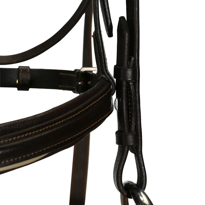 Cabezada + riendas equitación poni y caballo EDIMBURGH marrón