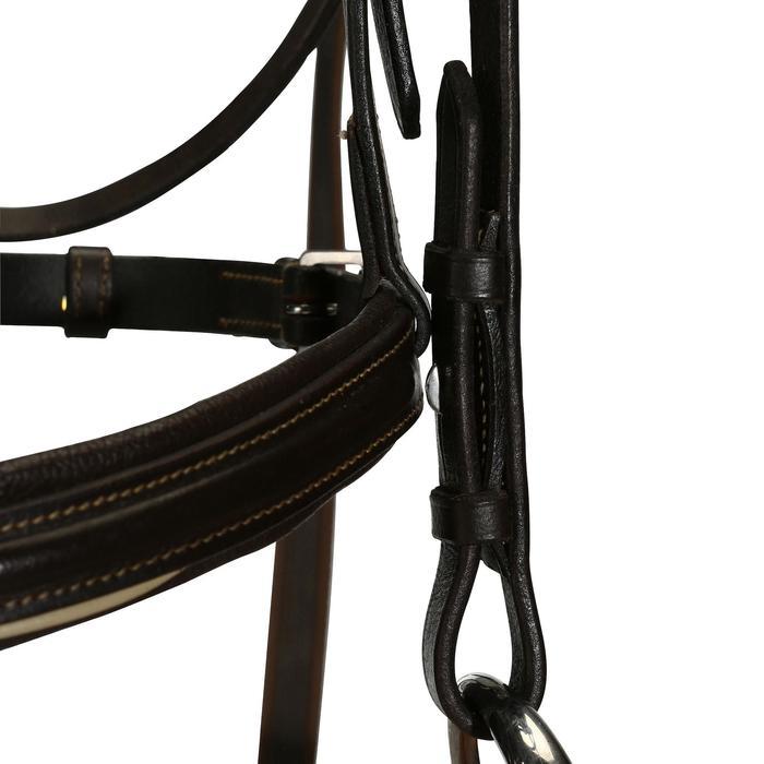 Hoofdstel + teugels ruitersport paarden en pony's Edimburgh bruin