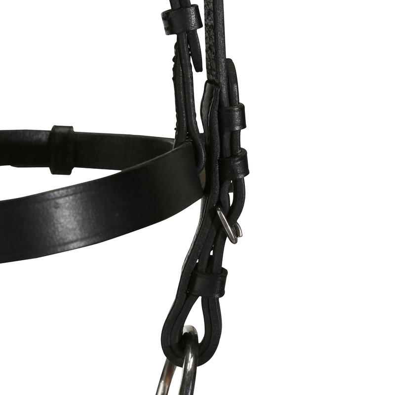 Cabezada + riendas de equitación poni y caballo SCHOOLING cuero negro