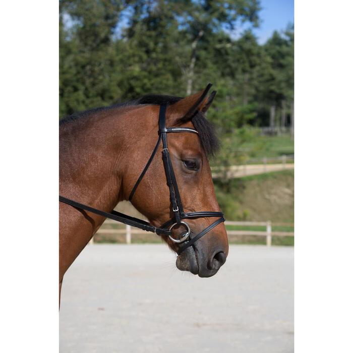 Filet + rênes équitation STRASS noir -  cheval - 700685