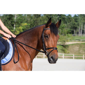 Filet + rênes équitation STRASS noir -  cheval - 700687