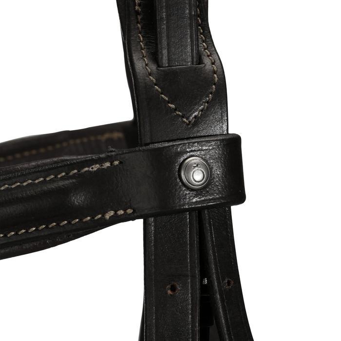 Filet + rênes équitation cheval et poney EDIMBURGH - 704325
