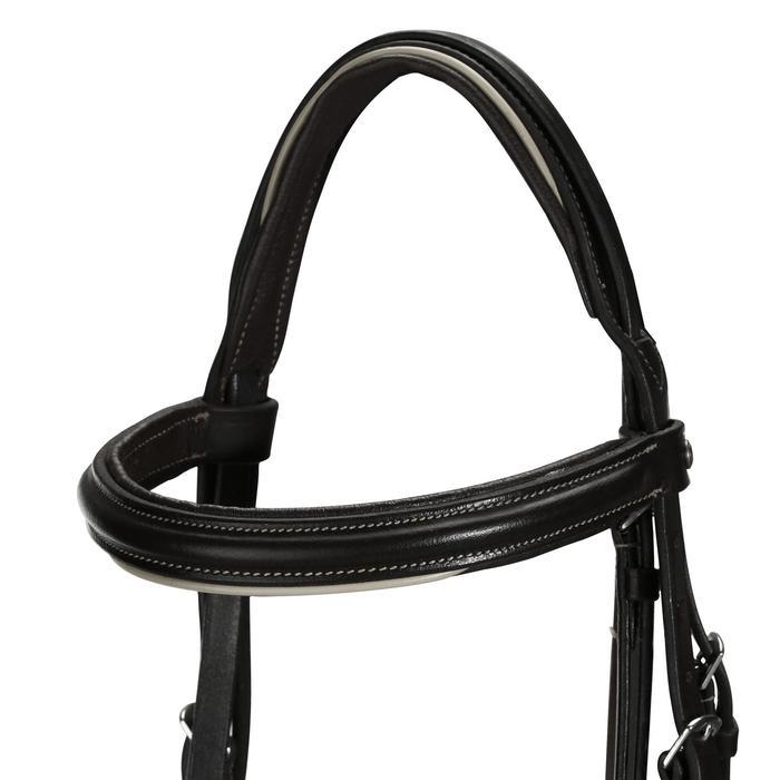 Filet + rênes équitation cheval et poney EDIMBURGH - 704326