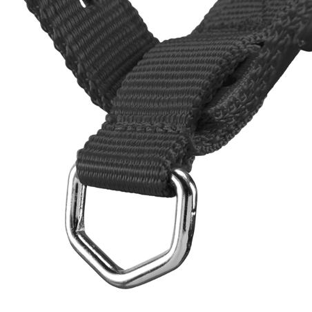 Schooling Horseback Riding Halter for Horse and Pony - Black