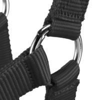 Schooling Horse Riding Halter for Horse and Pony - Black