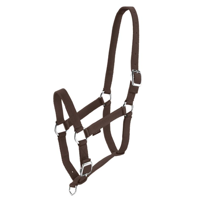 Schooling Horse Riding Halter for Horse and Pony - Brown