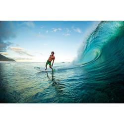Surfboard Bic 7'3 Mini Malibu