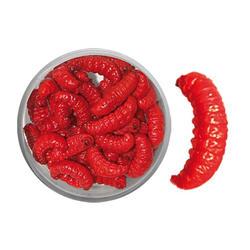 Bienenmaden mumifiziert rot