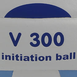 Volleybal V300 maat 5 wit/blauw - 762607