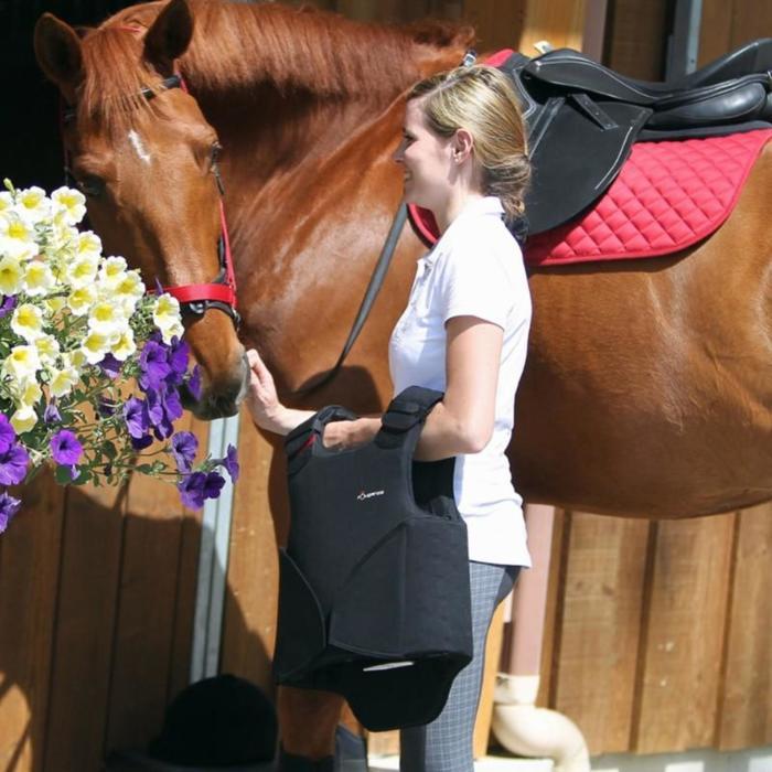 Licol équitation poney et cheval SCHOOLING - 795503