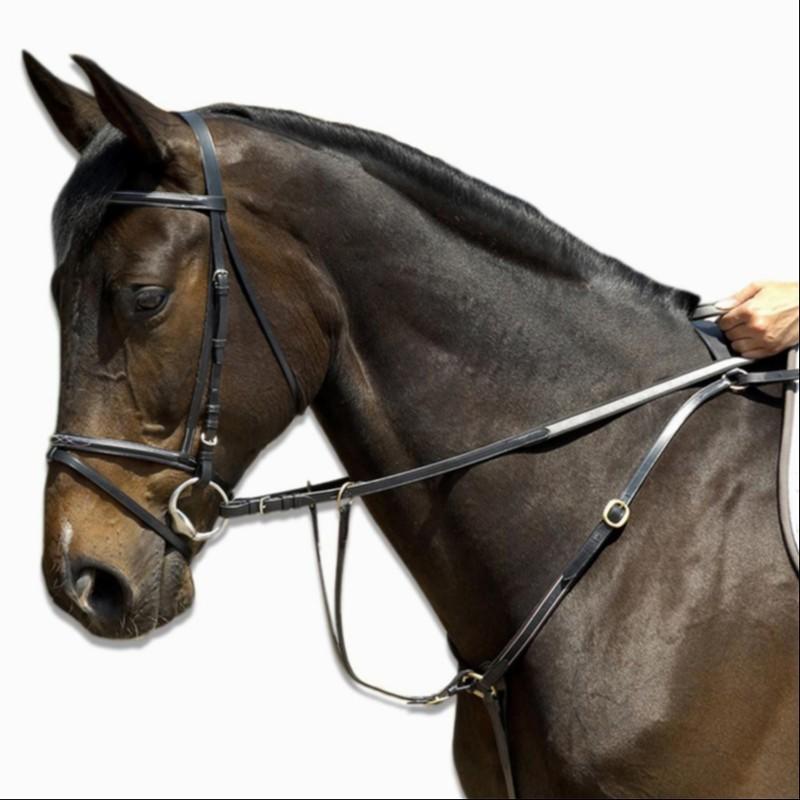 Collier + martingale équitation cheval SCHOOLING noir