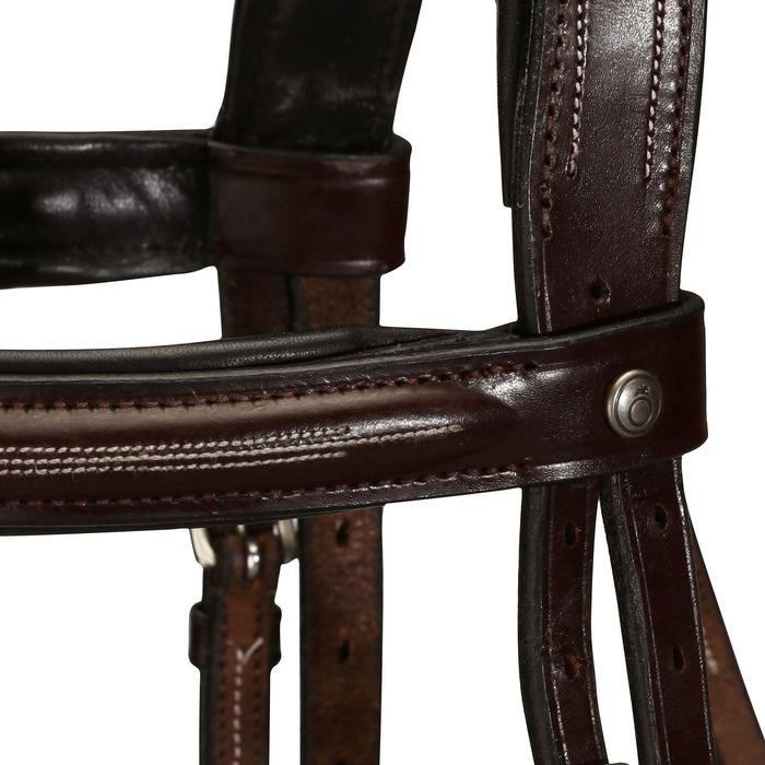 Filet + rênes équitation cheval et poney TINCKLE marron - 799798