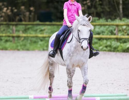 Klein meisje te paard dat over grondbalken loopt