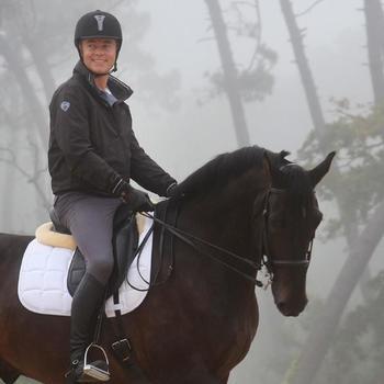Set brida + riendas equitación BEAUVALAIS negro talla caballo