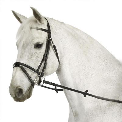 مجموعة شدة رأس ولجام الإسراع Essen للحصان والمهر - أسود