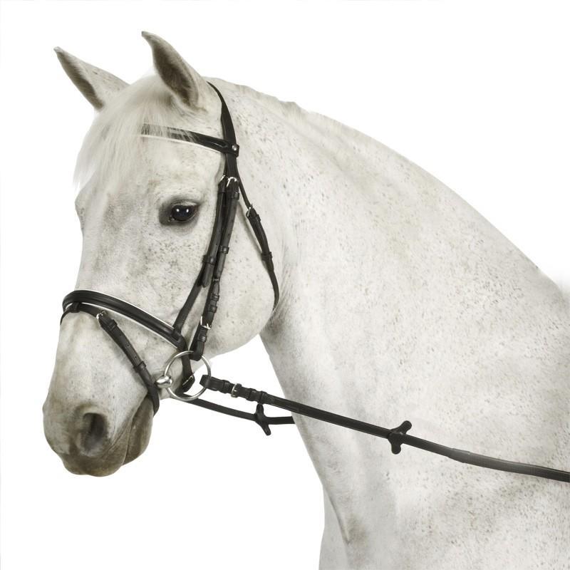 Filet + rênes équitation cheval et poney ESSEN noir