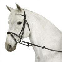 Filet + rênes équitation ESSEN noir - poney et cheval