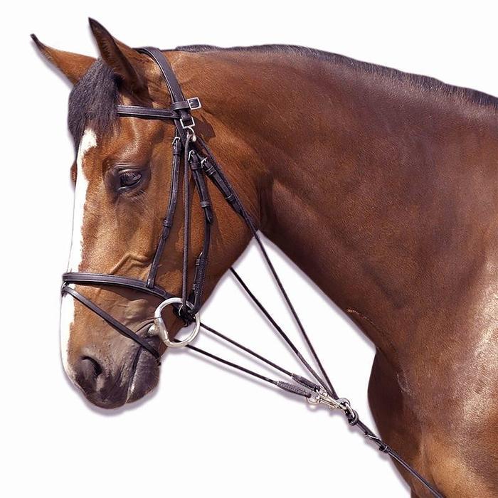 Gogue de equitação SCHOOLING castanho - tamanho cavalo
